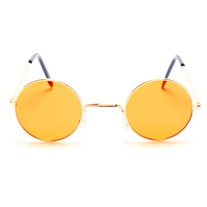 Round Orange Glasses - Fancy Dress Accessories front