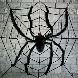 Large Spider Web & Spider - 2.4m