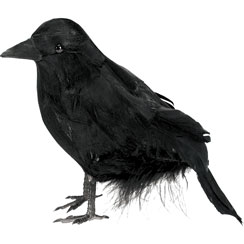 Small Feathered Raven - 10cm