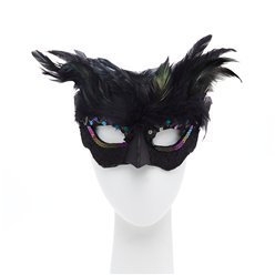 Raven Black Masquerade Mask with Feathers