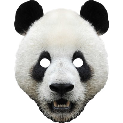 Panda Animal Cardboard Mask - World Book Day Fancy Dress Accessories front