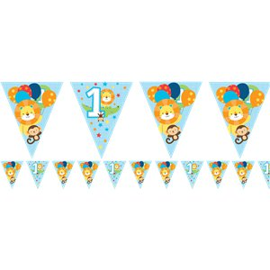 One is Fun Boy Paper Flag Bunting