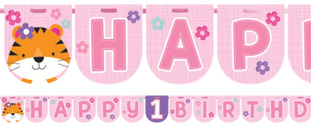 One Is Fun Girl Ribbon Banner - 2.4m