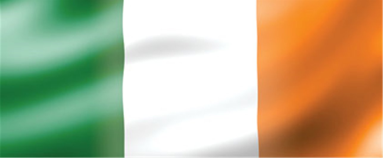 Irish Flag Personalised Banner - 6ft x 2.5ft