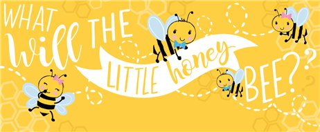 What Will It Bee Custom Banner 6ft. x 2.5ft.