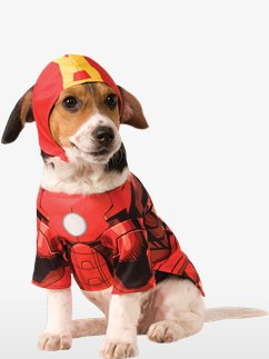 Iron Man Dog