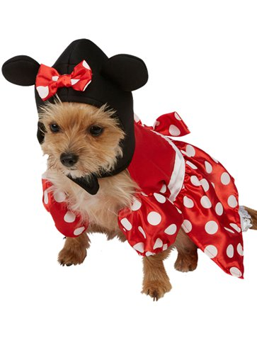 Minnie Mouse Dog Costume front