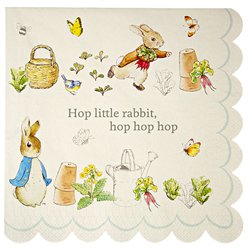 Peter Rabbit Paper Napkins - 33cm