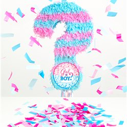 Gender Reveal Pull Piñata Kit