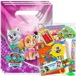 Pink Paw Patrol Pre-filled Party Bag Kit