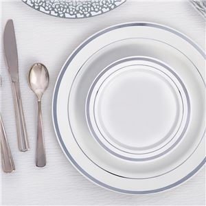 Premium Plastic Plates - 26cm White with Silver Trim