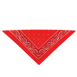 Fancy Dress Accessories Cowboy Bandana