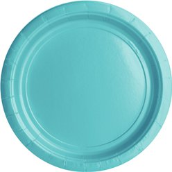 Robin's-Egg Blue Plates - 23cm Paper Party Plates
