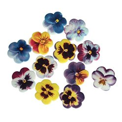 Edible Pansy Flowers Sugar Cake Decorations - 60pk