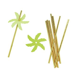 Palm Leaf Paper Straws