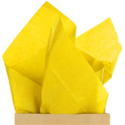 Yellow Tissue Paper - 50cm