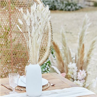 A Touch Of Pampas Off White Dried Bunny Tail Grass