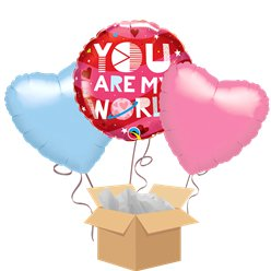 """You Are My World"" Balloon Bouquet - Delivered Inflated"