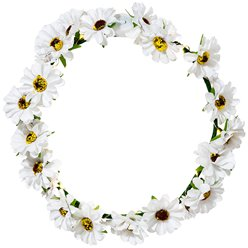 Light Up Daisy Flower Crown