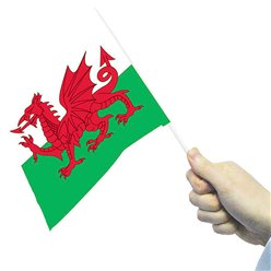St David's Welsh Hand Waving Flags