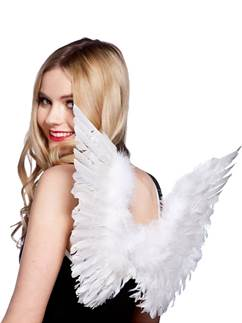 Small Angel Wings - 42cm
