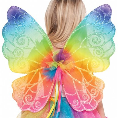 Kids Rainbow Fairy Wings - 48.2cm - Fairy Wings front