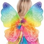Childrens Rainbow Fairy Wings - 48.2cm