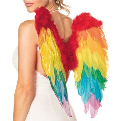 Rainbow Angel Wings
