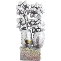 Silver Holographic Bow, Ribbon & Tag Christmas Pack