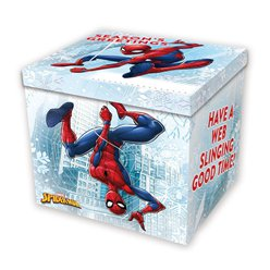 Spiderman Christmas Eve Box