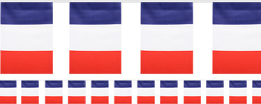 French Flag Fabric Bunting - 6m