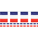 French Flag Polyester Bunting - 6m