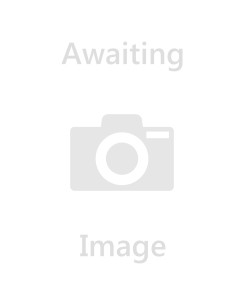 Disney Planes Dusty Cardboard Cutout - 174cm