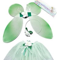 Fairy Set Green - Child Costume Fancy Dress