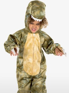 T-Rex - Child costume Fancy Dress