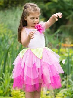 Rose Petal Fairy - Child Costume Fancy Dress