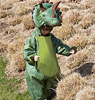 Triceratops - Toddler and Child Costume