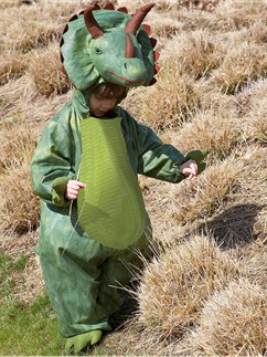 Triceratops - Toddler and Child Costume Fancy Dress