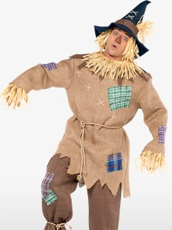Mr. Scarecrow - Adult Costume Fancy Dress