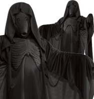 Harry Potter Dementor - Adult Costume Fancy Dress