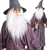 Lord of the Rings Gandalf - Adult Costume Fancy Dress