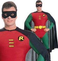 Robin - Adult Costume Fancy Dress