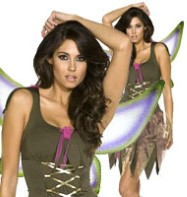Pixie Fairy - Adult Costume Fancy Dress