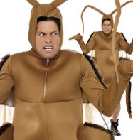 Cockroach - Adult Costume Fancy Dress