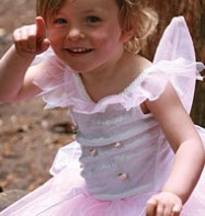 Rosebud Fairy - Child Costume Fancy Dress