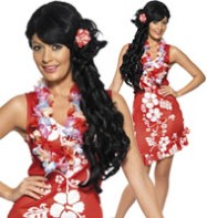 Hawaiian Beauty - Adult Costume Fancy Dress