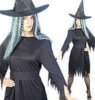 Spooky Witch - Adult Costume Fancy Dress