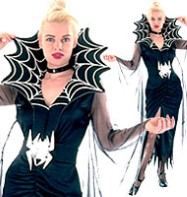 Spider Queen - Adult Costume Fancy Dress