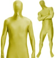 Morphsuit Gold - Adult Costume Fancy Dress