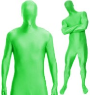Morphsuit Green - Adult Costume Fancy Dress